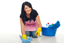 Domestic Cleaning Balham